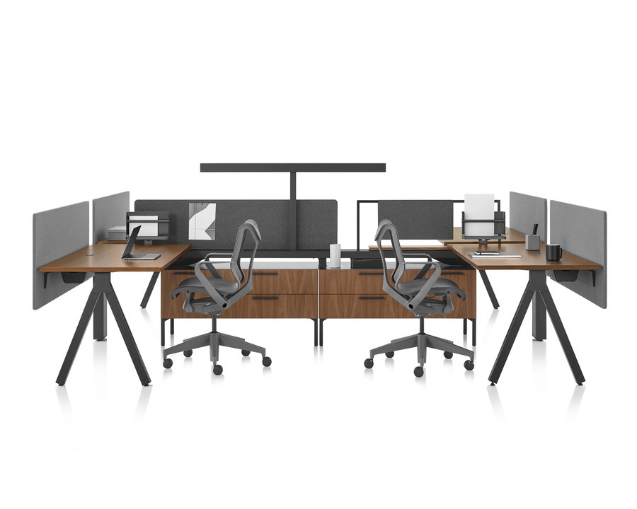Canvas Vista workstations in dark wood and black with modesty screens, t-shaped light, and black Cosm office chairs.